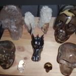 schedels website